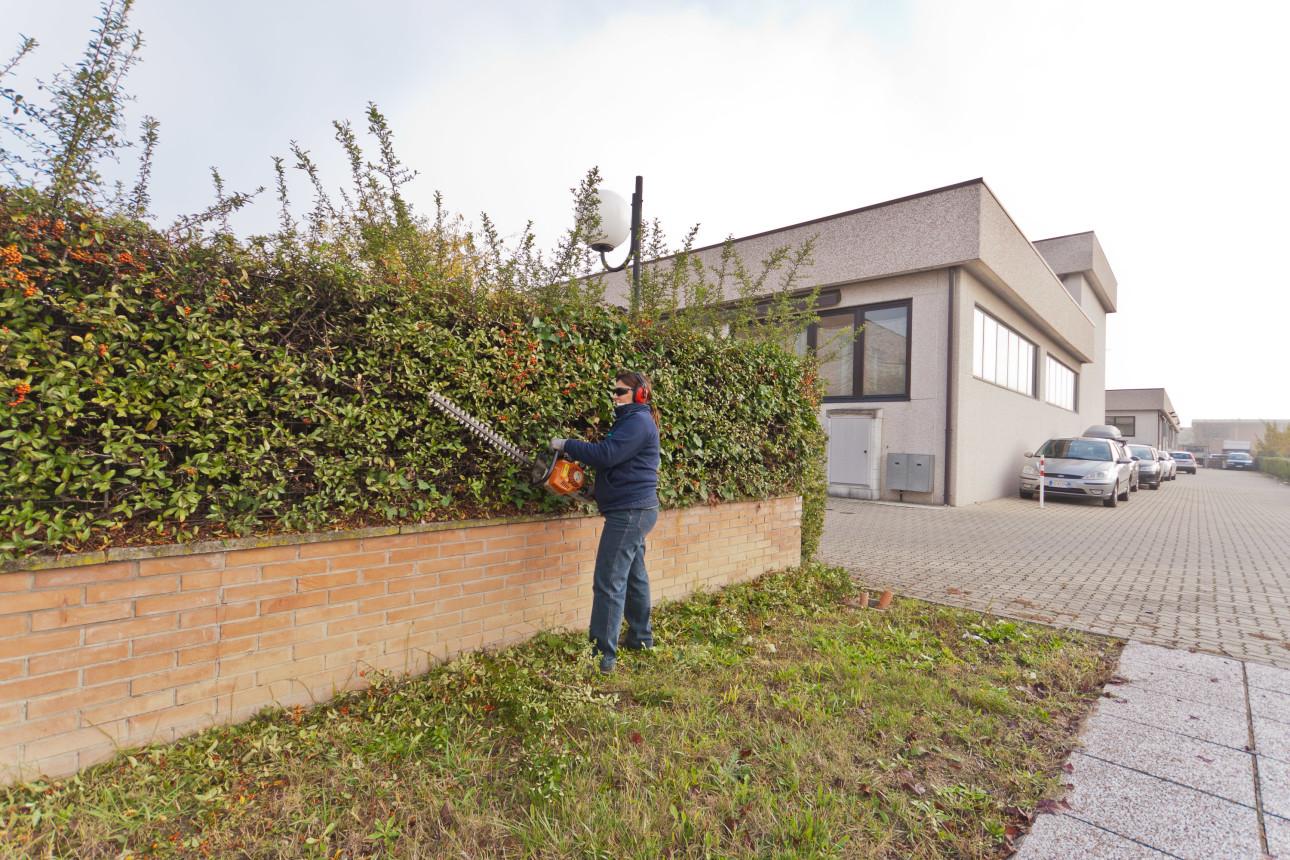 Giardinaggio Image